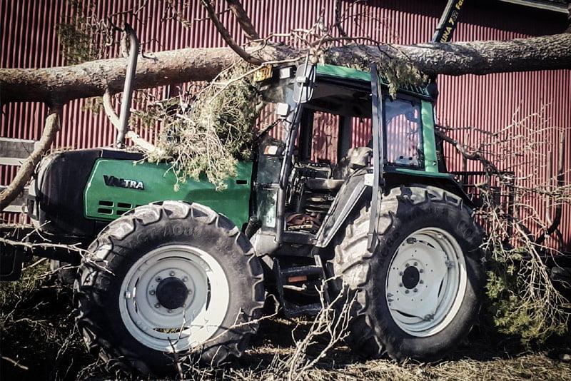 Näin sujuu puun kaataminen traktorilla